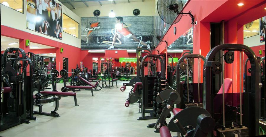 Ejercicio en casa o en el gimnasio for Gimnasio el gym